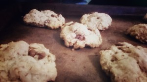 Fresh out of the oven: Gluten Free oatmeal chocolate chip cookies, now available. $3.00/half dozen. 5.50/dozen